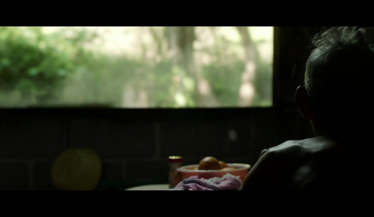 Los Ausentes – Nicolas Pereda (2014)