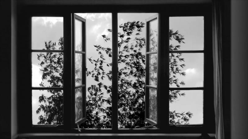 24 Frames – Abbas Kiarostami (2017)